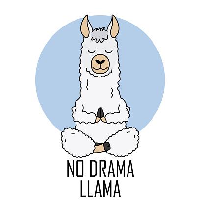 Cute llama doing yoga. Vector isolated