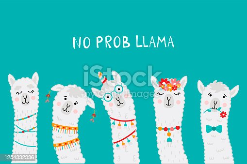 Cute llama faces with No PROB LLAMA motivational quote. Cartoon alpaca. Vector illustration with llama faces for poster, greeting card, t-shirts, stickers etc.
