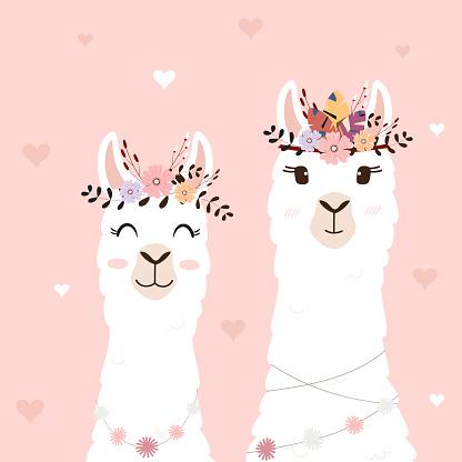Cute llamas for wedding invitation.