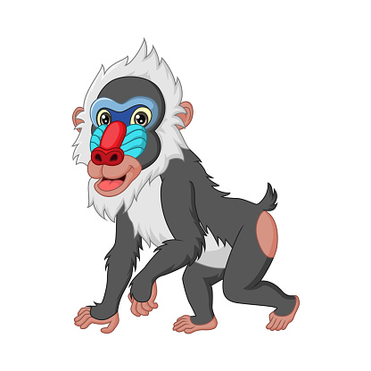 Cute mandrill baboon cartoon isolated on white background