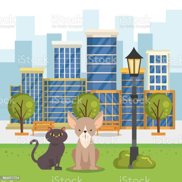 Cute mascots pet shop icons vector id934017724?b=1&k=6&m=934017724&s=612x612&h=3cljikraksmsrj6dhdz35bdhruudxcqgmmll19qyg8i=