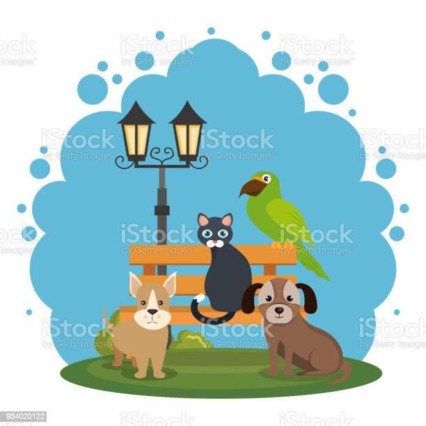 Cute mascots pet shop icons vector id934020122?b=1&k=6&m=934020122&s=612x612&h=mu3cofgtcumfqjmj081arsxqmfmbi ightloa82tcb8=