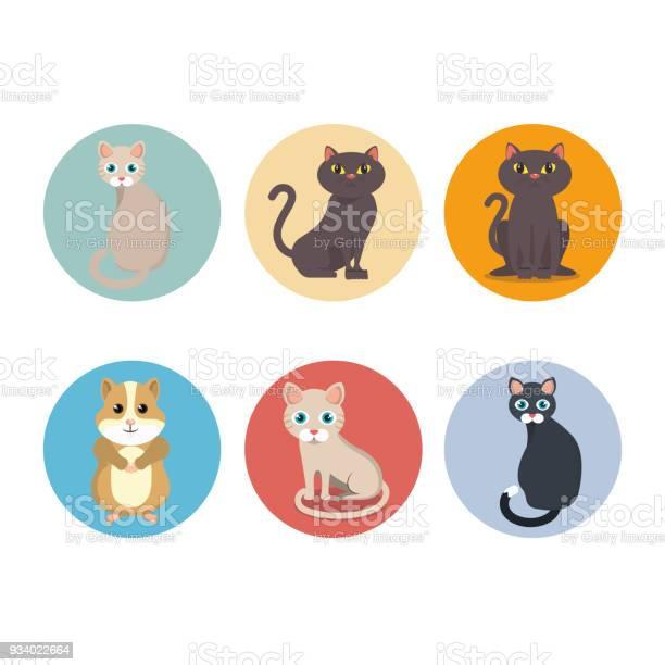 Cute mascots pet shop icons vector id934022664?b=1&k=6&m=934022664&s=612x612&h=xareef6iykc rvd0w7eksznfozwa we2svbdc7cotvg=