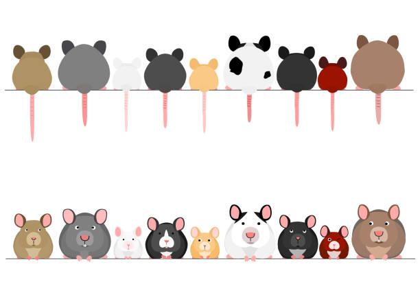 一列にかわいいネズミとネズミ ベクターアートイラスト