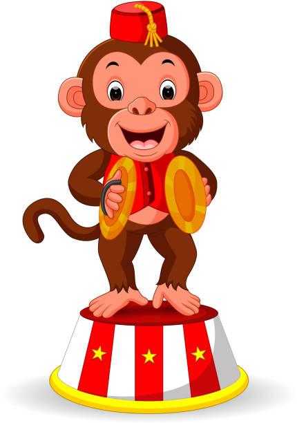 cute monkey playing percussion hand cymbals - talerz perkusyjny stock illustrations