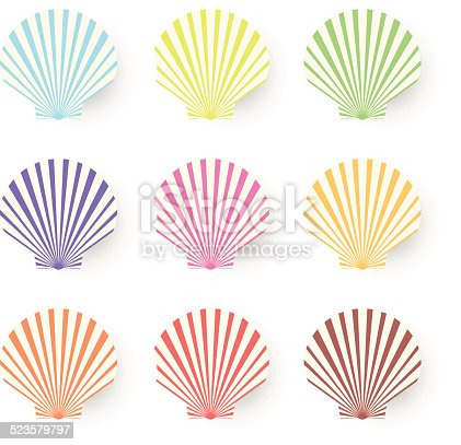 Beautiful pastel sea shell set. Vector cartoon Illustration