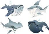 Cute Ocean Predators 2