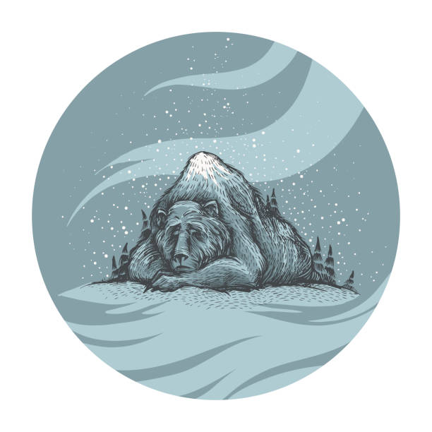cute old sleeping bear into the woods - hibernation stock illustrations, clip art, cartoons, & icons