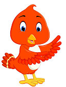 Cute orange bird cartoon