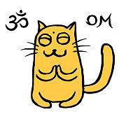 Cute orange cat Tik meditation.