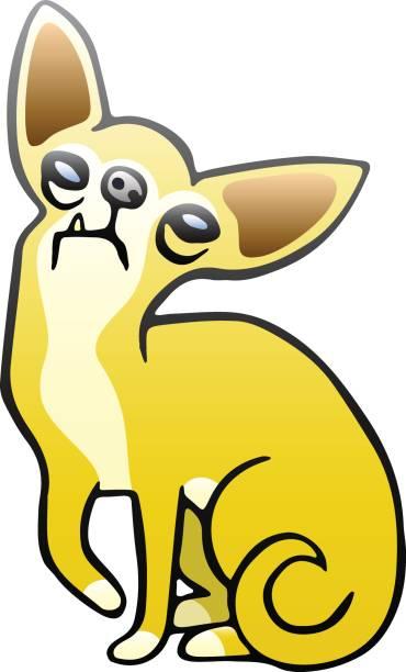 süße orange chihuahua hund. vektor-illustration. - hundehaarbögen stock-grafiken, -clipart, -cartoons und -symbole