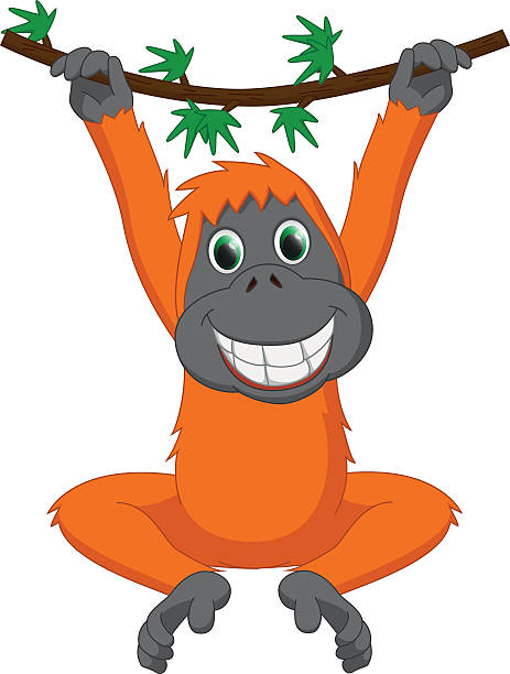 Orangutan Cartoon Top 60 Gorilla ...