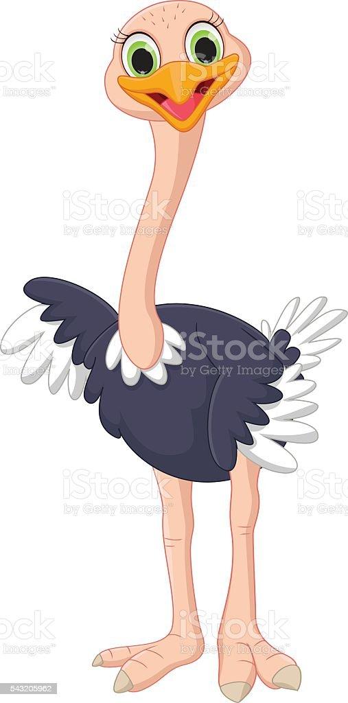 Bonito desenho de avestruz - ilustração de arte em vetor