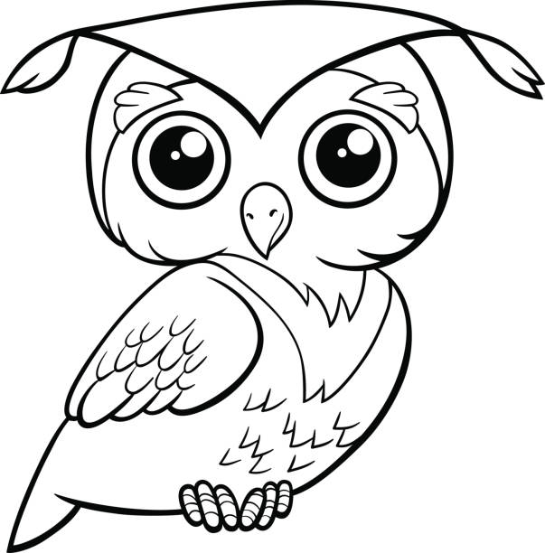 cute owl coloring page - black and white owl stock illustrations, clip art, cartoons, & icons