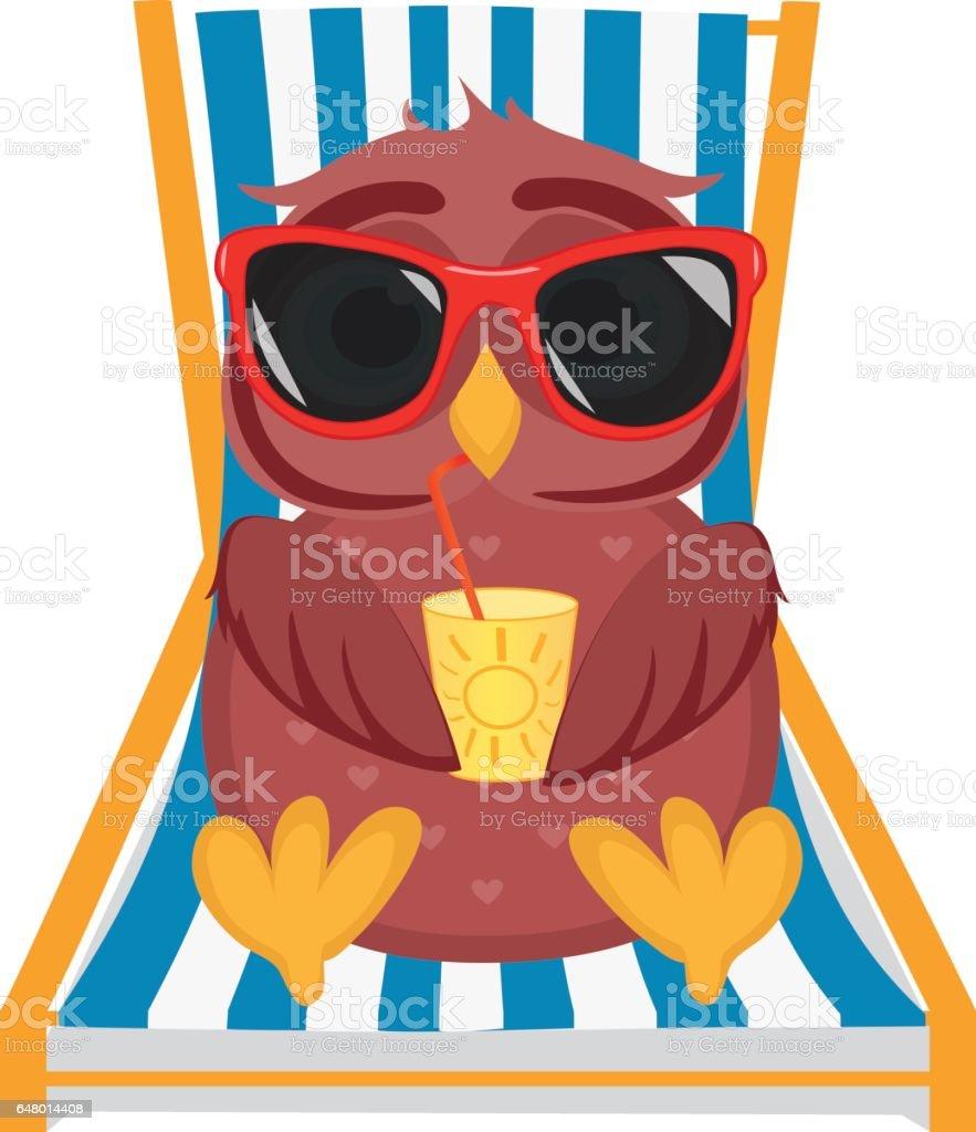 Niedliche Eule In Sonnenbrille Im Urlaub Liegen Und Entspannen Auf