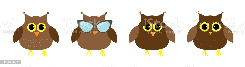 Cute Owl Set Line Big Eyes Sunglasses Cute Cartoon Kawaii Funny