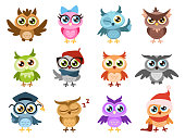 Cute owls. Colorful friendly owl, birthday kids shower stickers. Funny animal joyful forest or zoo birds, cuteness comic characters cartoon isolated vector set