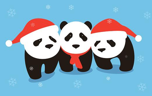 cute panda baby wearing Christmas hat, flat design, vector illustrator