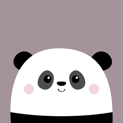 Cute panda bear. Funny head face. Pink cheeks. Kawaii cartoon character. Happy Valentines Day. Baby greeting card template. Notebook cover, tshirt. Violet background. Flat design.