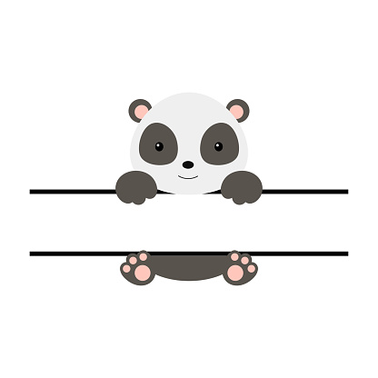 Cute panda split monogram. Funny cartoon character for shirt, scrapbooking, print, greeting cards, baby shower, invitation, home decor. Bright colored childish stock vector illustration.
