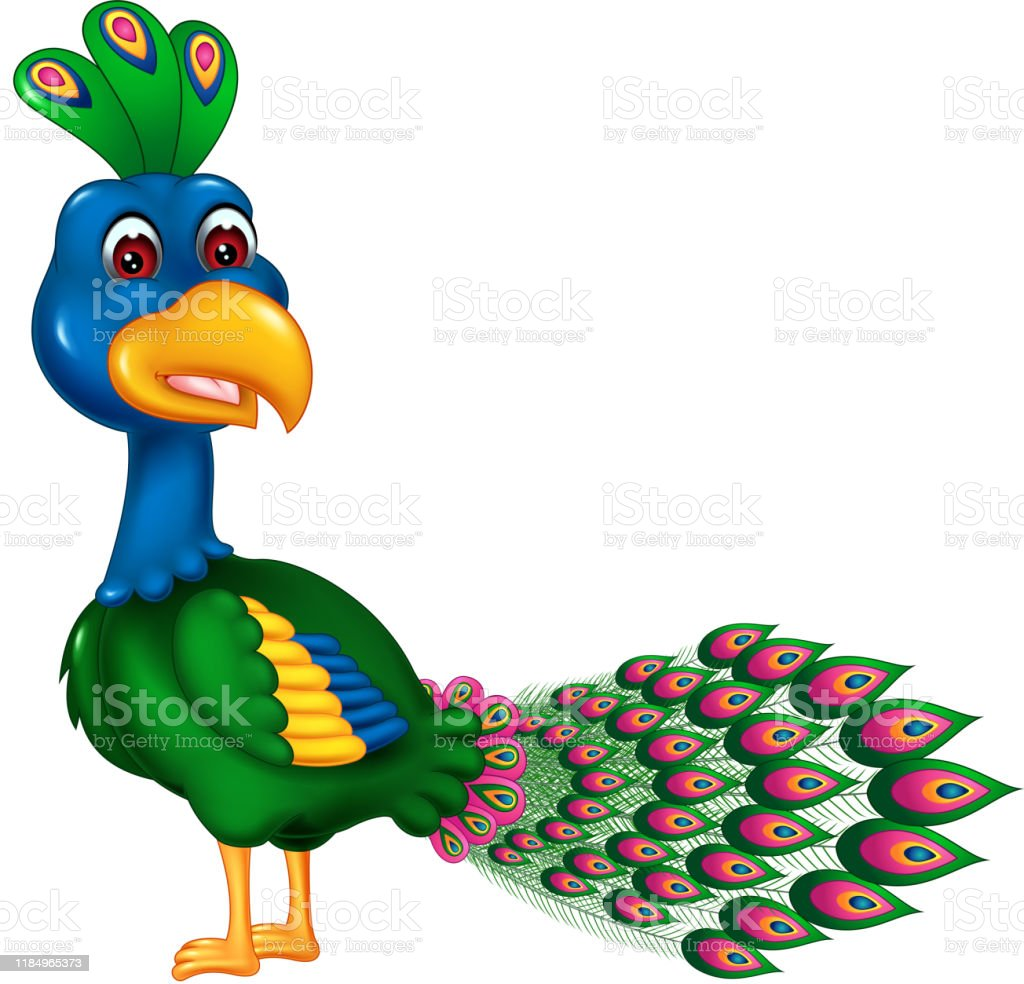 View Peacock Cartoon