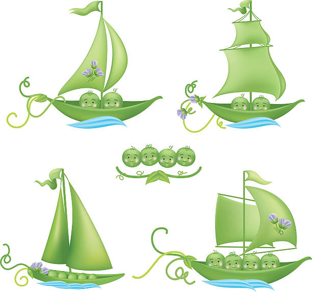 cute peas in a pod with boats set - like two peas in a pod stock illustrations, clip art, cartoons, & icons