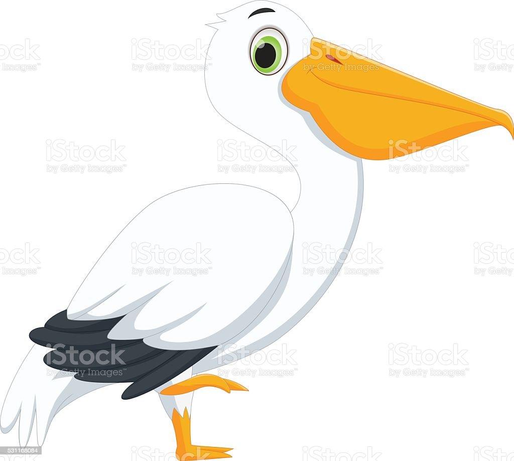 cute pelican cartoon vector art illustration