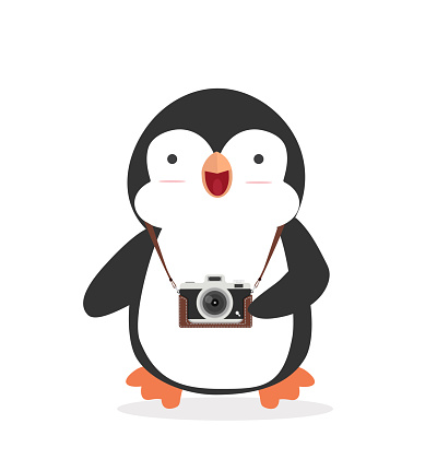 Cute Penguin with a camera vector