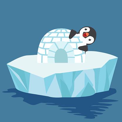 Cute penguin with igloo ice house