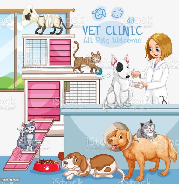 Cute pets clinic welcome sign vector id956792690?b=1&k=6&m=956792690&s=612x612&h=uhzg7xi eyhympmq8ud3nktokjkv6jfka9byl95ftmk=