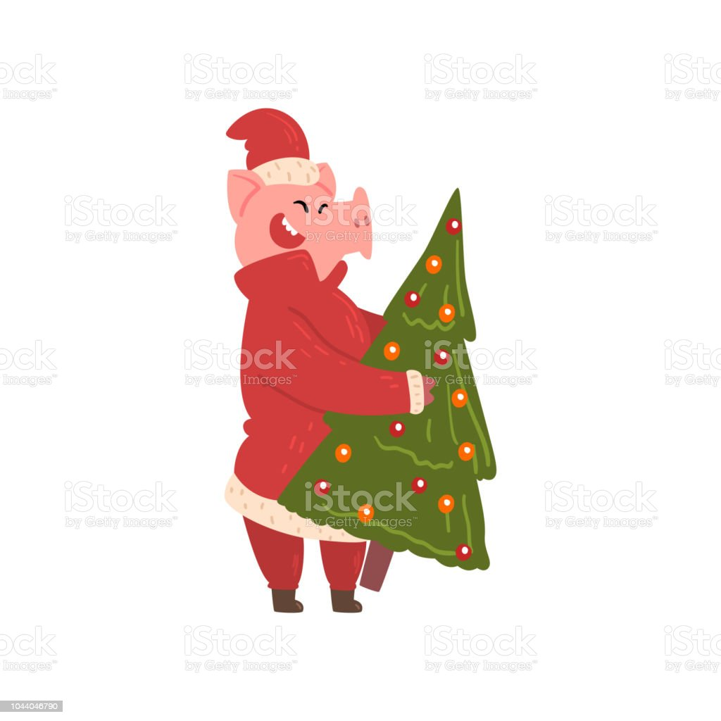 Cute Pig Carrying Christmas Tree Funny Piggy Character Dressed In
