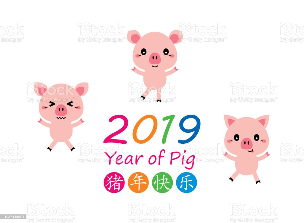 Cute Pig Merry Christmas And Happy Chinese New Year 2019 Greeting