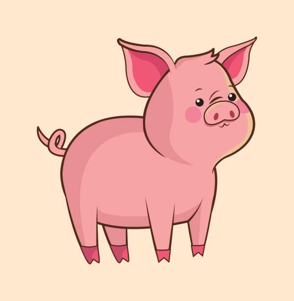 子豚 イラスト素材 Istock