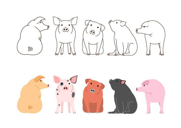 かわいい豚枠セット ベクターアートイラスト