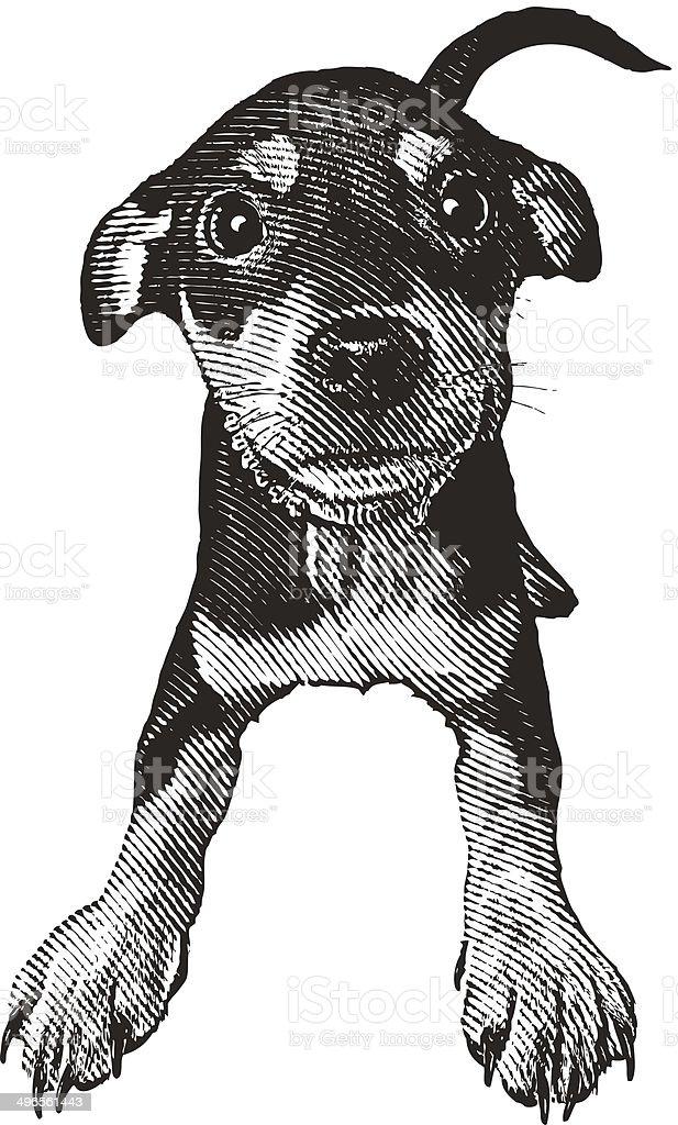 Cute, Playful Puppy vector art illustration