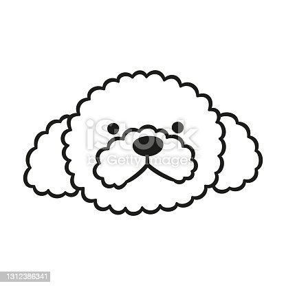 istock Cute Poodle face. Dog head icon. Hand drawn isolated vector illustration 1312386341