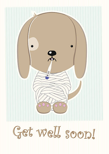 cute poor sick doggy, get well soon postcard - get well soon stock illustrations, clip art, cartoons, & icons