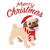 vector of cute pug dog celebrating the christmas