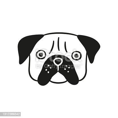 istock Cute pug face. Dog head icon. Hand drawn isolated vector illustration 1312386342