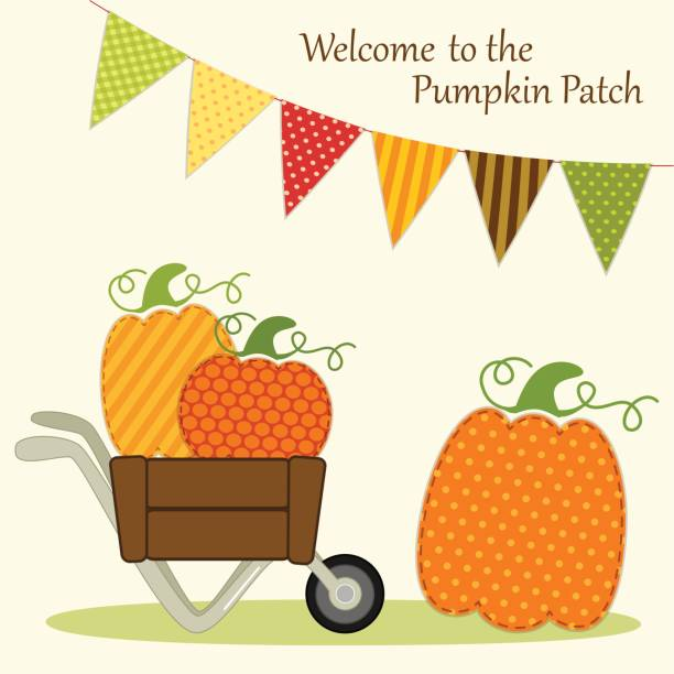 niedliche pumpkin patch-karte mit hellen bunting fahnen in traditionellen farben des herbstes und verschiedene kürbisse in schubkarre - stoffmarkt stock-grafiken, -clipart, -cartoons und -symbole