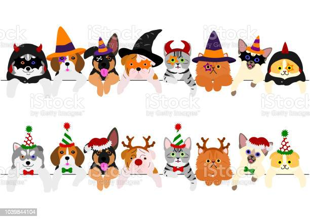 Cute puppies and kitties border set with halloween costumes and with vector id1039844104?b=1&k=6&m=1039844104&s=612x612&h=ohktuqf7u4hot3kwibsadn38i lc8jpm jp jknt27i=