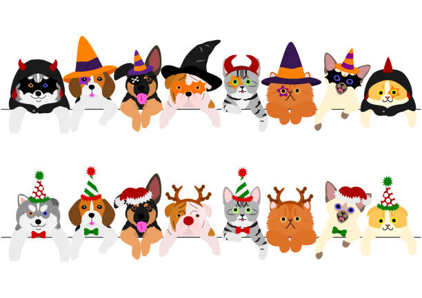 cute puppies and kitties border set with Halloween costumes and with Christmas costumes cute puppies and kitties border set with Halloween costumes and with Christmas costumes halloween cat stock illustrations