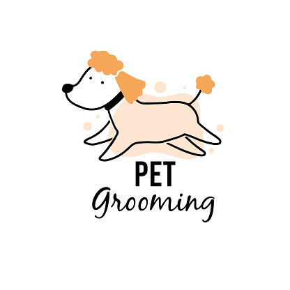 Cute puppy dog pet grooming