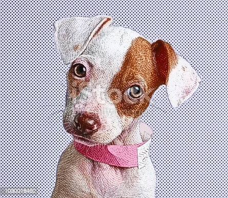 Engraving illustration of a Cute Puppy Jack Russell Terrier dog in animal shelter