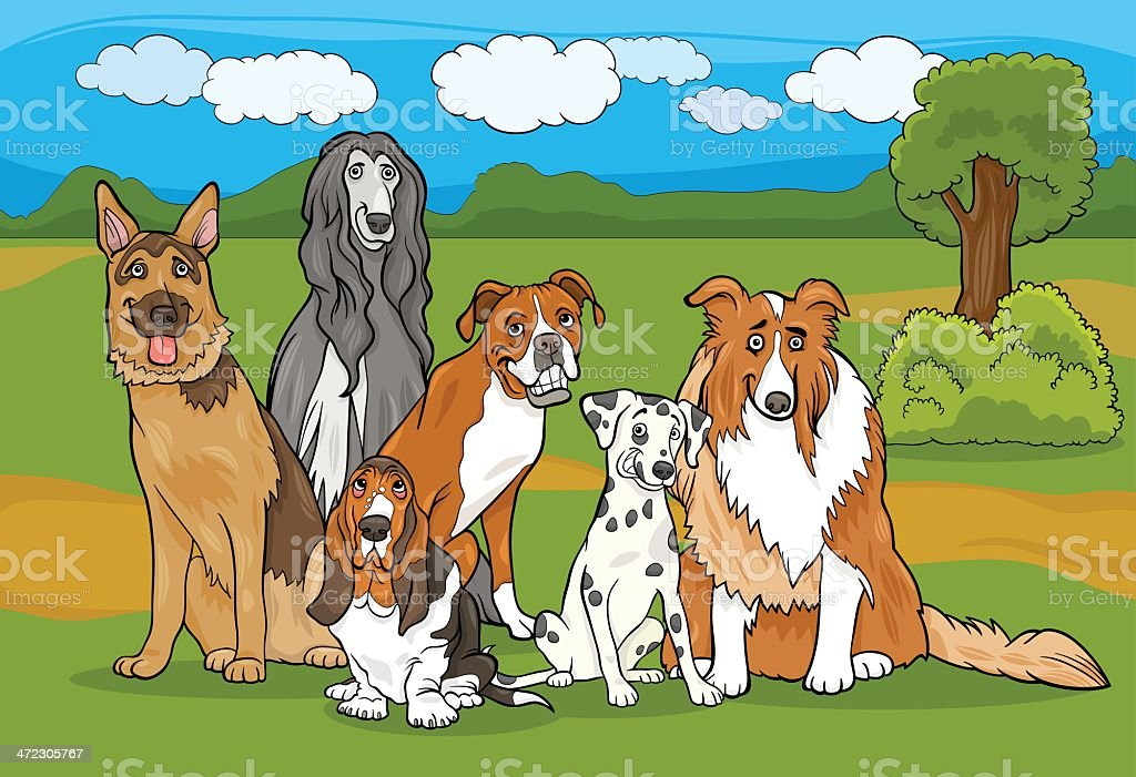 cute purebred dogs group cartoon illustration royalty-free stock vector art