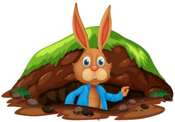 eine niedlichen kaninchen bekommen aus dem loch - kaninchenbau stock-grafiken, -clipart, -cartoons und -symbole