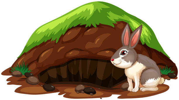 top clip art of rabbit hole clip art vector graphics and