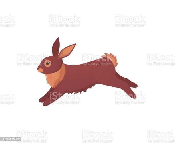 Cute rabbit in cartoon style bunny pet silhouette vector id1150475952?b=1&k=6&m=1150475952&s=612x612&h=dofroxp2faioaly2qqxoboclaufru7qlbe2f66sfhok=