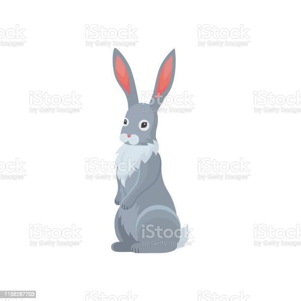 Cute rabbit in cartoon style bunny pet silhouette vector id1158287703?b=1&k=6&m=1158287703&s=612x612&h=3yxhkpaojev1ok32j6axfjlh6akas1eabjmzy8qgmho=