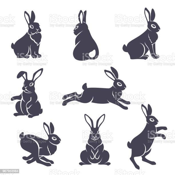 Cute rabbits silhouettes vector id967953564?b=1&k=6&m=967953564&s=612x612&h=bvymfms0qilt8g2l4 kk6 k1hym keraq3ilybjuesy=